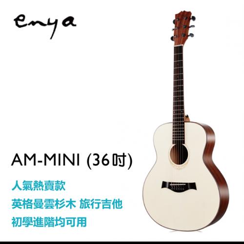 吉他-AM-MINI