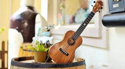 為什麼烏克麗麗是最容易上手的樂器?